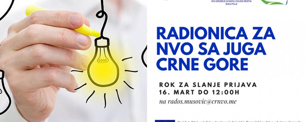 CRNVO: Radionice za NVO sa juga CG